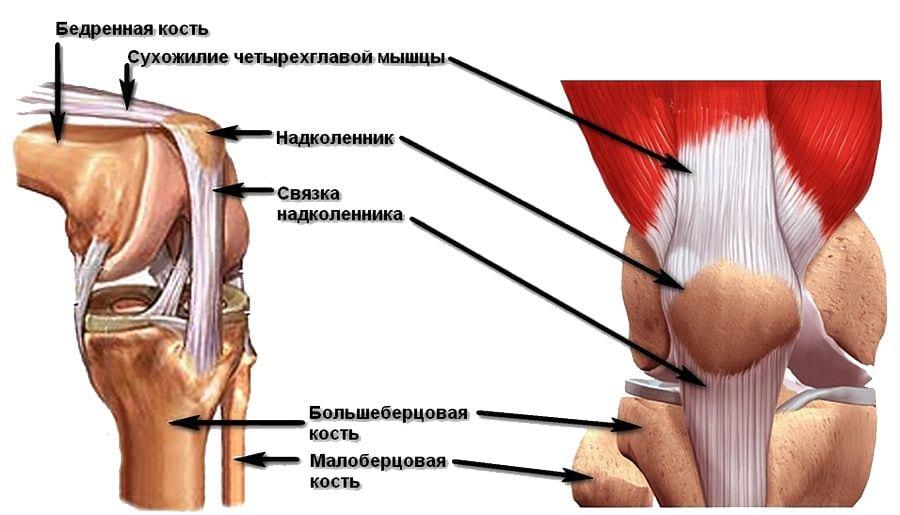 Ротационный подвывих коленного сустава гипар сустав
