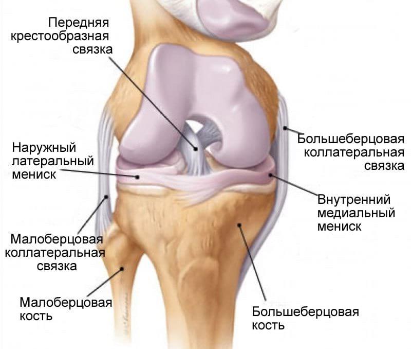 Травматология коленного сустава мениск связки артроскопия коленного сустава в ярославле стоимость